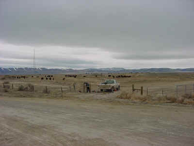 020120_dunphy_ranch1.JPG (200870 bytes)